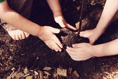 plant-kids.jpg
