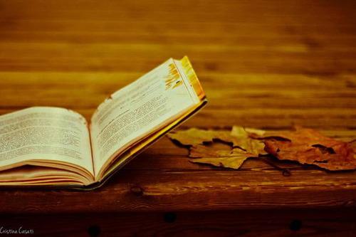 autumn_book.jpg